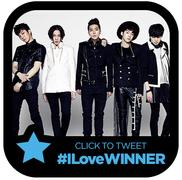 rsz_winner